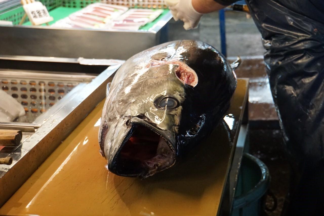 塩釜魚市場7