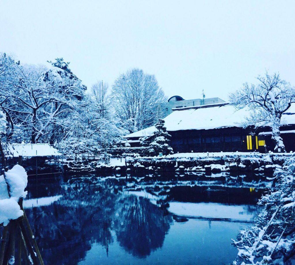 清風荘もみじ公園の雪景色