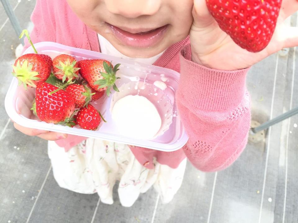 """草莓与冰淇淋的""""甜蜜""""之旅"""