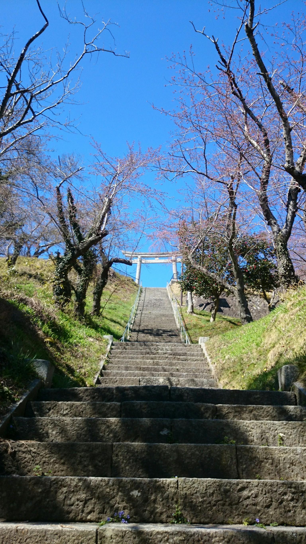 เดินทางมาเยือนอิชิโนะมากิกับทูต VISIT JAPAN
