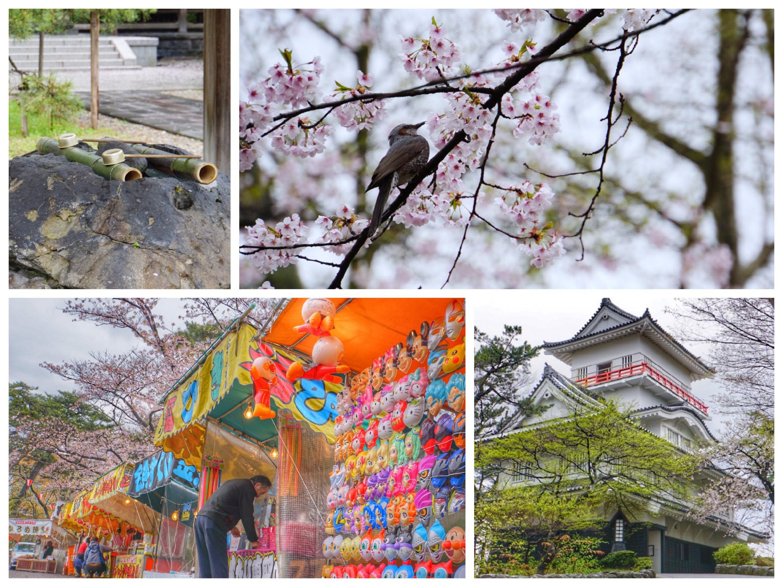 祭に桜に神社にお城!? 圧倒的コンテンツの千秋公園 part2