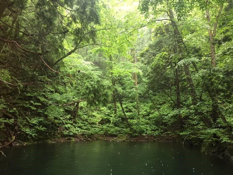 十和田湖と奥入瀬渓流へ冒険に出かけよう!