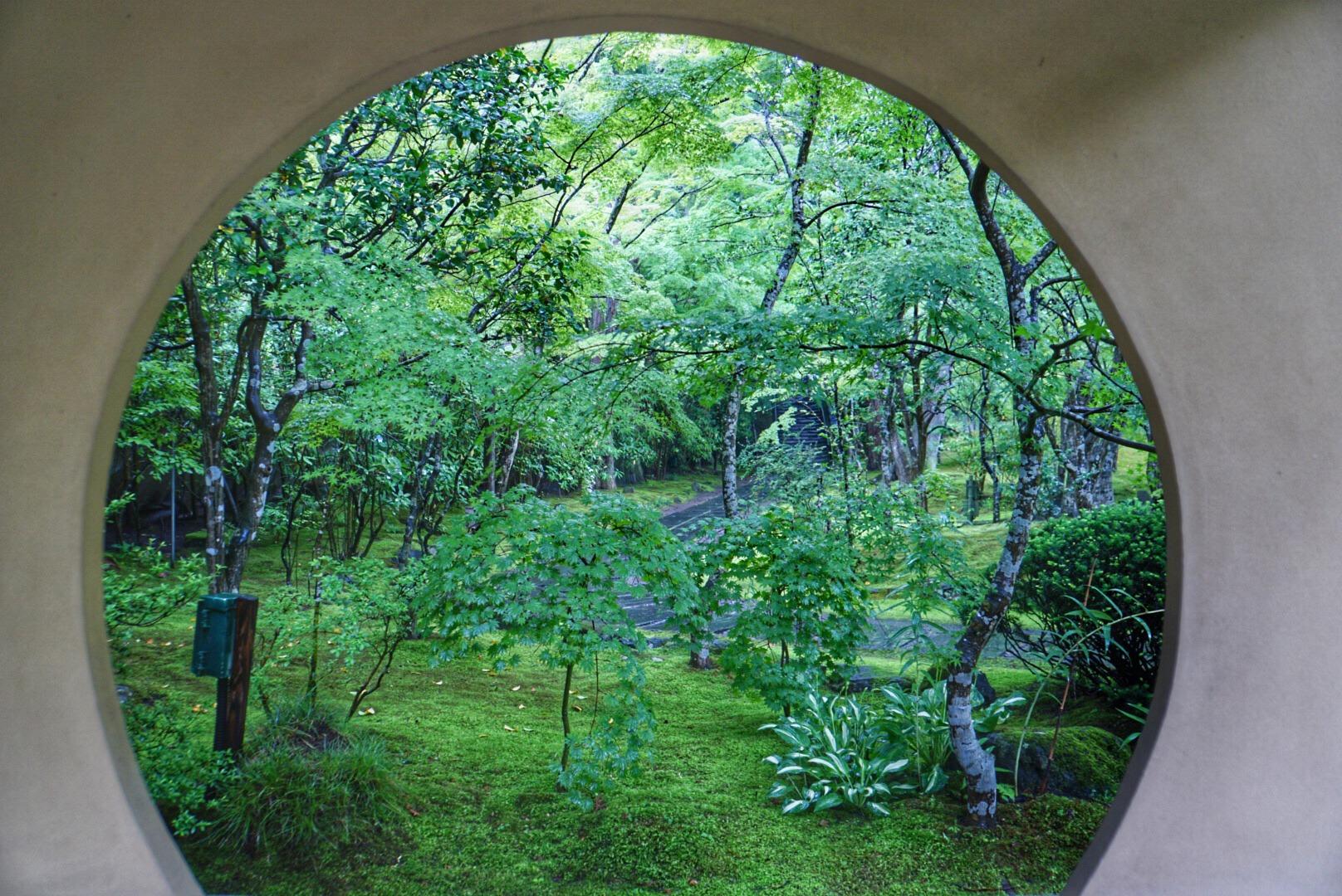 梅雨の松島1人旅