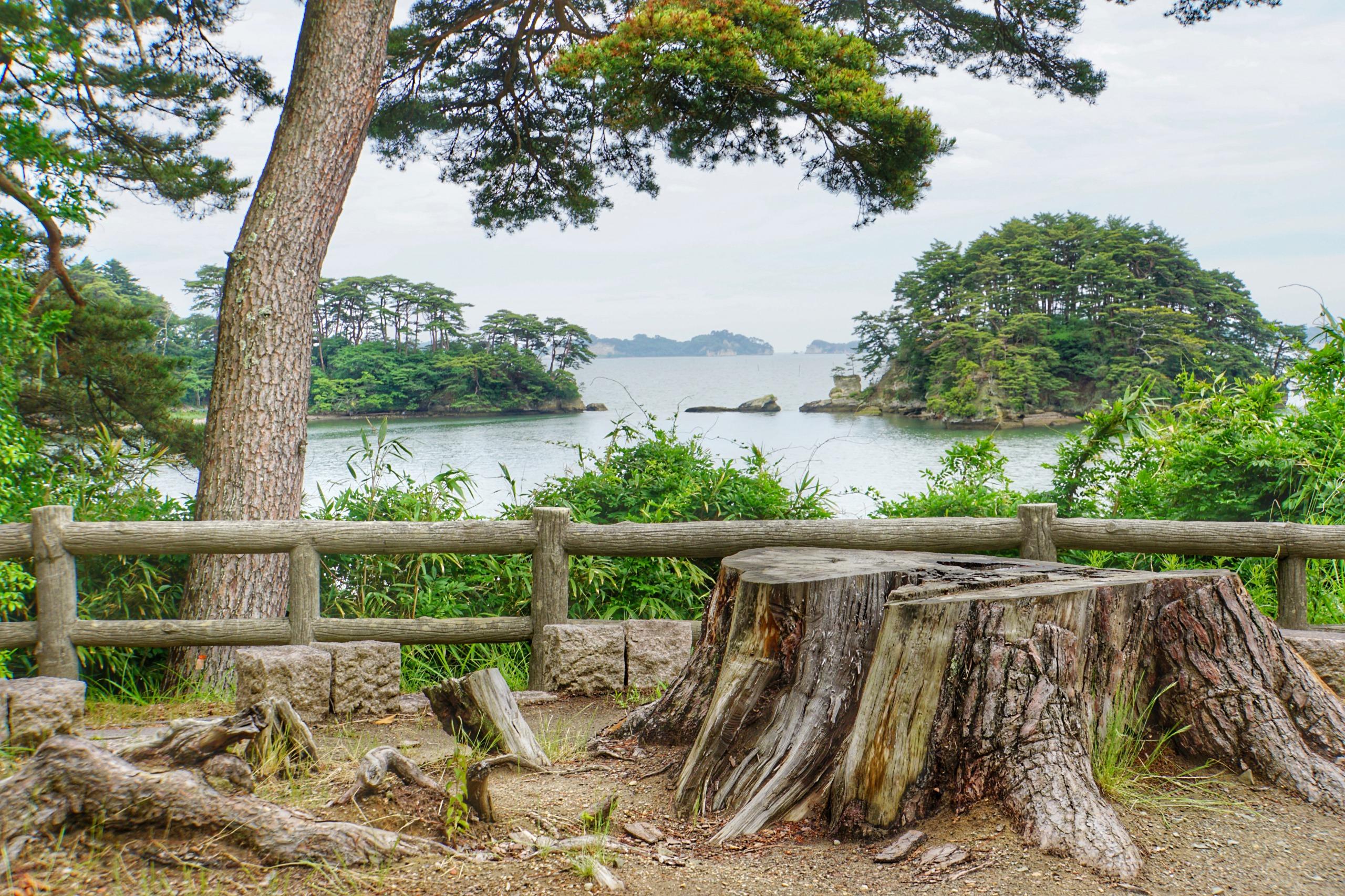 My trip to Matsushima during the rainy season Part 2