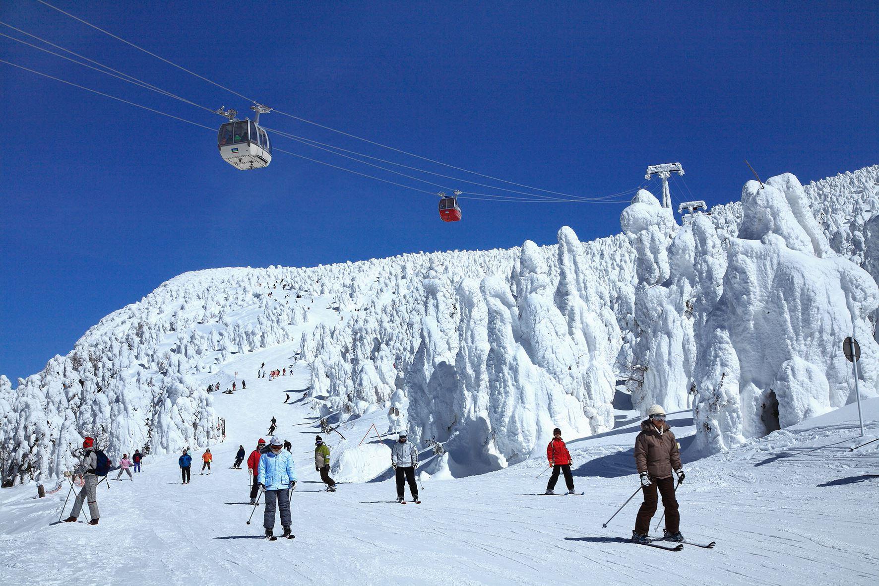 【蔵王エリア】樹氷にスキー!冬のおすすめ観光スポット5選