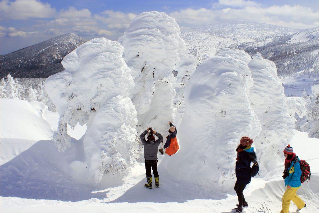 【2020年】也能看到樹冰!宮城藏王澄川雪公園的交通方式・鄰近溫泉地的抵達方式完全攻略