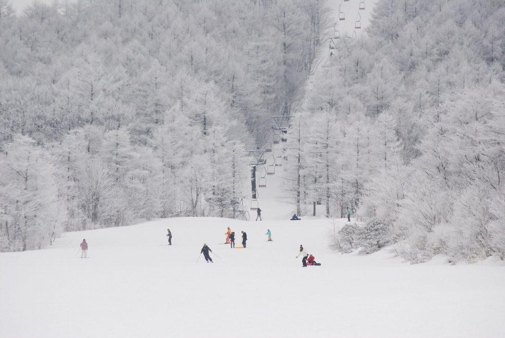 【2020年版】初學者也能安心!宮城藏王白石滑雪場交通・住宿全攻略!