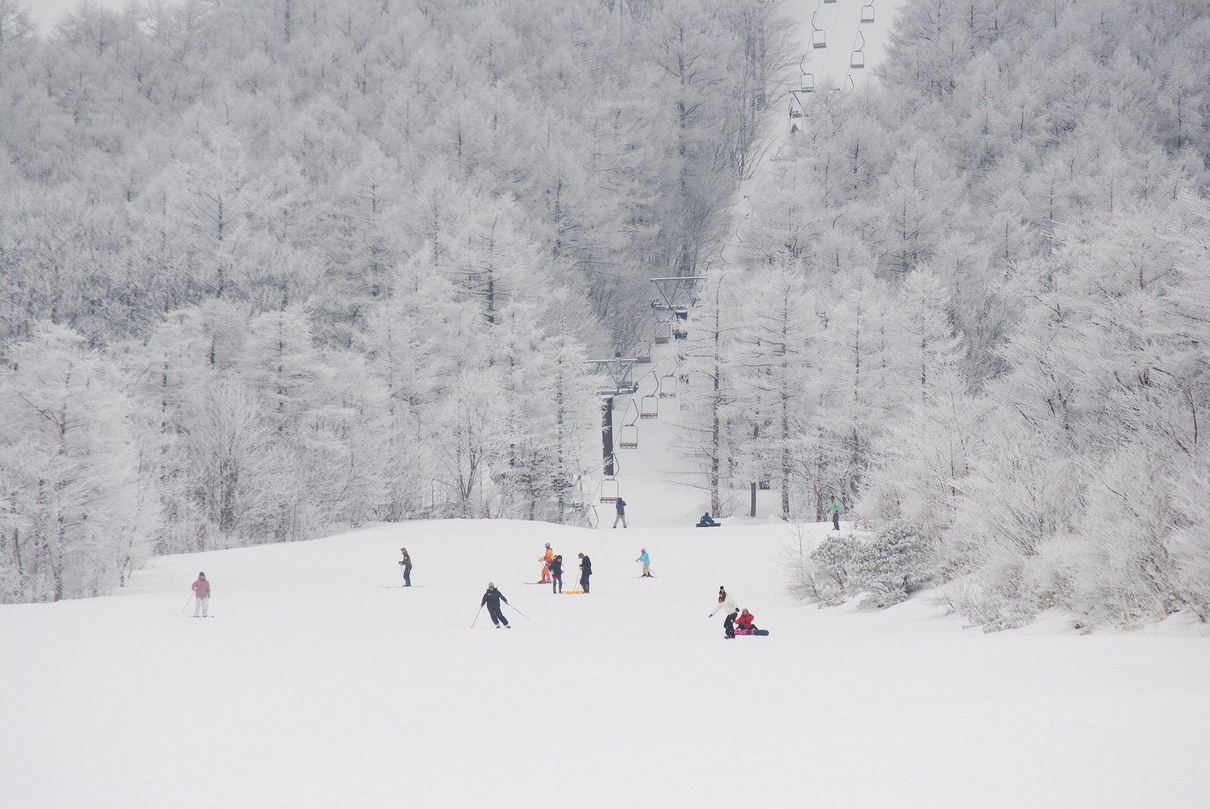 【2020年版】はじめてでも安心。みやぎ蔵王白石スキー場へのアクセス・宿泊完全攻略!