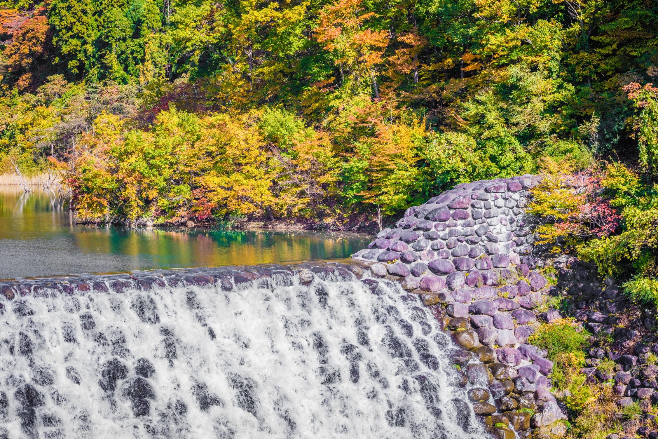 นี่คือ ฤดูใบไม้ร่วงของโทโฮคุที่มีชื่อเสียงระดับโลก! 5 สถานที่ท่องเที่ยวแนะนำในซาโอ