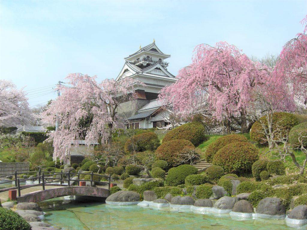 [ปี2020] ทิวทัศน์ที่งดงามของโทโฮคุและซาโอ! สถานที่ๆ มีชื่อเสียงเรื่องซากุระบาน 5 แห่งไปจนถึงวิธีการเดินทางไปอย่างละเอียด