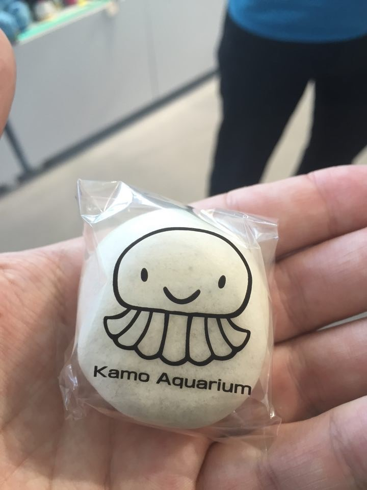 jelly-fish-mochi